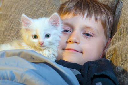 A young and cheerful little boy is playing with a white cat on the couch