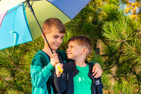 Two brothers stand in an embrace under a bright multi-colored umbrella and look at each other in a pine forest