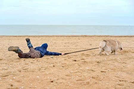 Il cane husky tira il ragazzo per la cintura e scappa da lui, trascinando il bambino lungo la sabbia in riva al mare.