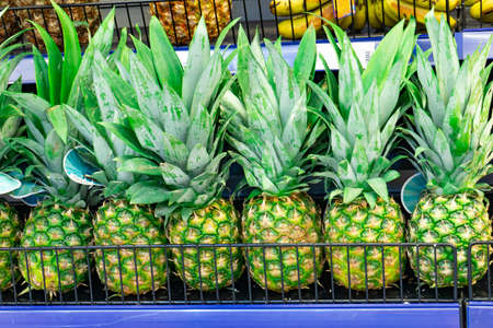 Pineapple in a supermarket on a store counter for sale