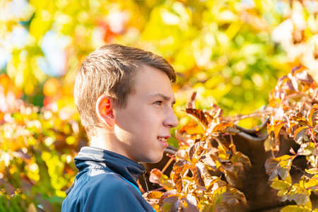 Autumn portrait of a boy in nature, a teenager looks away. Reklamní fotografie