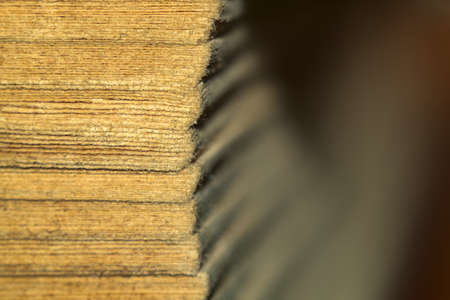 Macro photo of book sheets, old book sheets of paper.