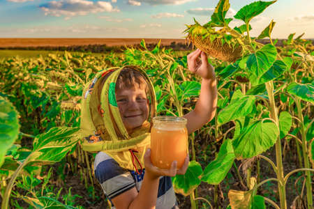 Child with a jar of honey on the sunflower field Stockfoto