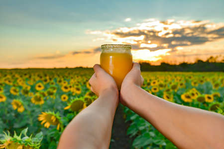 Man's hands hold a jar of honey against the background of a field with sunflowers and the evening sky. Beekeeping concept. Stockfoto