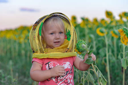 A little girl in a children's mask of a beekeeper picks off the heads of a sunflower.