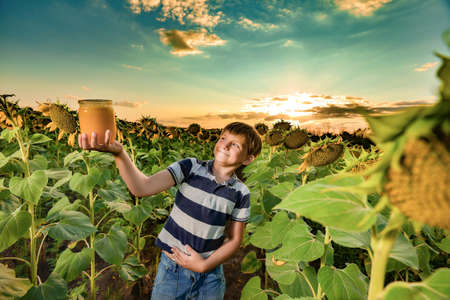 A boy advertises honey in a sunflower field and holds a jar of honey in his hand against the backdrop of the sunset and evening sun.