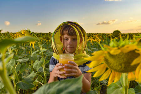 A young beekeeper wearing a bee mask holds a jar of honey in a sunflower field against the backdrop of the sunset and evening sun. Imagens