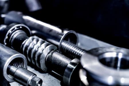 Worm shaft with bearings for transmitting the rotary motion of the mechanical movement of the gears.