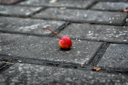 Cherry on a roadway