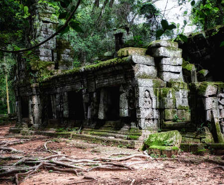 Lost antiquity in the jungle