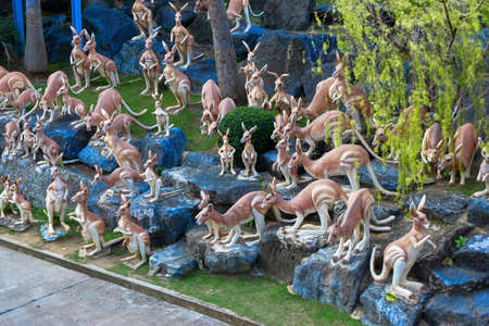 Clay kangaroos