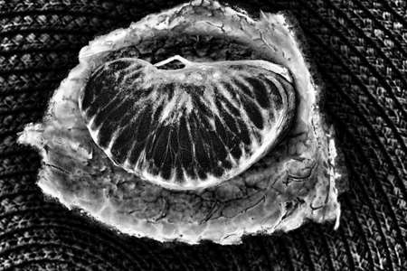 A slice of citrus in a black and white image