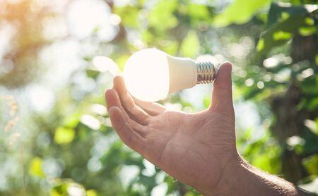 Hand holding light bulb in nature. Green energy Standard-Bild