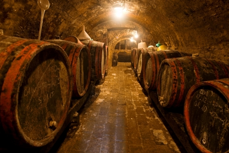 Wine barrels and bottles in the back in a cellar   Warm colors, wide angle view