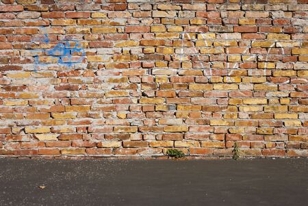undemanding: Red brick wall and a blacktop for photographer backgrounds
