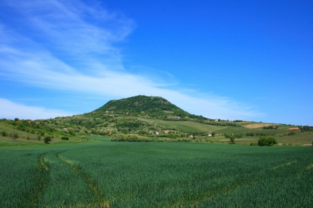 Badacsony mountain in Hungary with a crop field in front.
