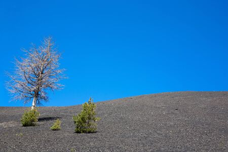 Bare landscape next to Etna volcano in Sicily, Italy.