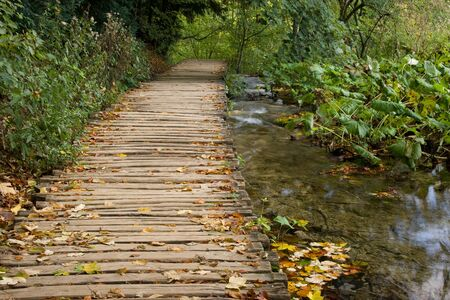 wooden pathway in autumnal forest next to a stream in Plitvice Lakes of Croatia