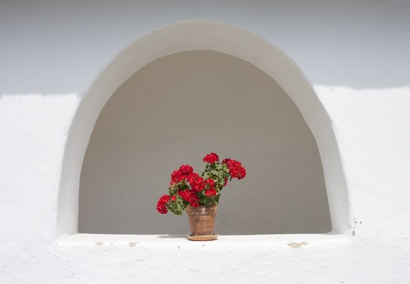old window with geranium flowers photo