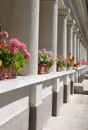 berm: geraniums between columns of an old house. Stock Photo