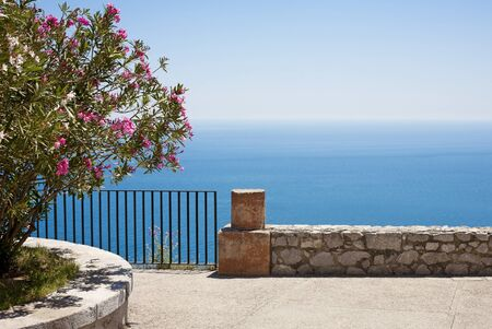 Mediterranean sea and oleander flower background (Taormina, Italy)
