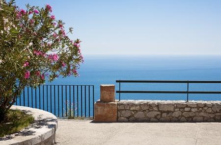 Mediterranean sea and oleander flower background (Taormina, Italy)