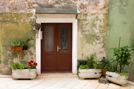Old mediterranean house entrance with flowers and a cat  Stock Photo