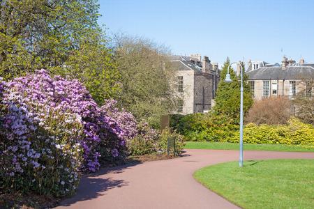 Blossoming bushes and pathway in public city garden, Scotland, Edinburgh Royal Botanical Garden