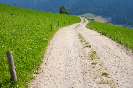 Winding dirt road between vivid green meadows in the Dolomites, Italy Stock Photo
