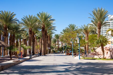 eilat: Eilat, Israel - February 11, 2016: Street detail at the beach In Eilat. Eilat is a famous recreation city in Israel.