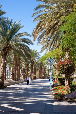 eilat: Eilat, Israel - February 11, 2016: Detail of the Promenade In Eilat. Eilat is a famous recreation city in Israel. Editorial