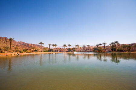 timna: The Timna Oasis Lake in Timna park, Israel Stock Photo