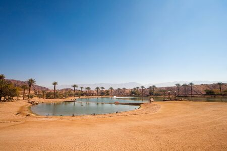 timna: The Timna Lake - Oasis in Timna park, Israel Stock Photo