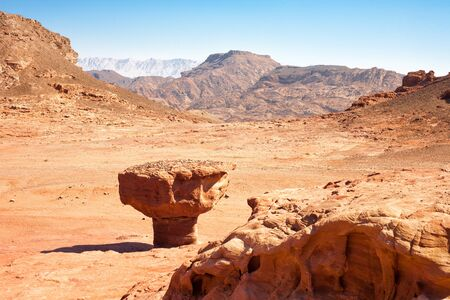 timna: The Mushroom Sandstone geological feature in Timna Park, Israel.