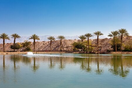 timna: The Timna oasis Lake in Timna National park near to Eilat, Israel