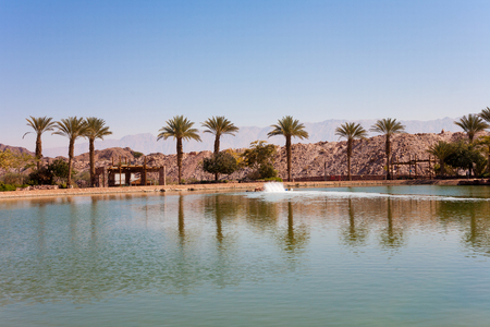 eilat: The Timna Oasis Lake in near to Eilat, Israel