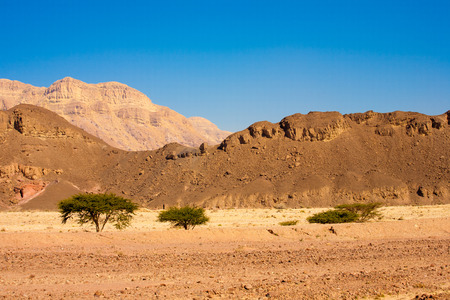 timna: Landscape from Timna National Park, Israel Stock Photo
