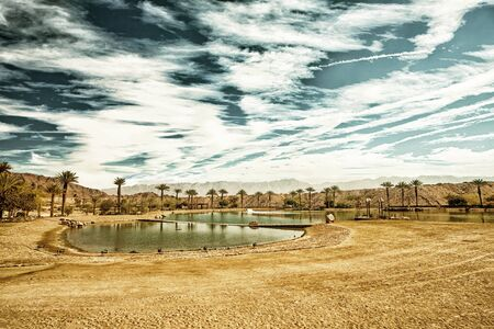 timna: The Timna Lake - Oasis in Timna park, Israel (HDR image with black gold filter)