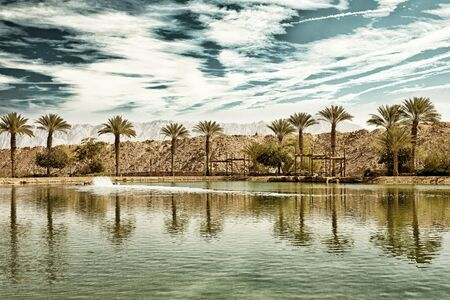 timna: The Timna oasis Lake in Timna National park near to Eilat, Israel (HDR image with black gold filter)  Stock Photo