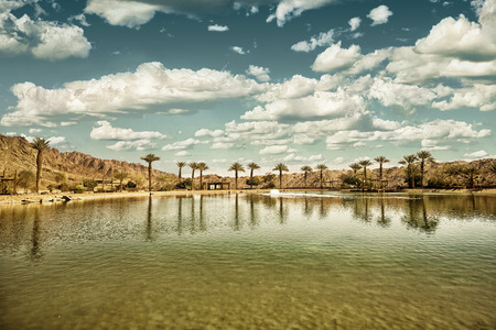 The Timna Oasis Lake in Timna park, Israel (HDR image with black gold filter) Stock Photo