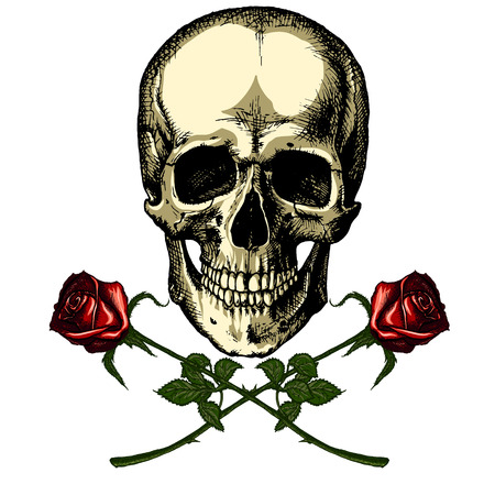 fatal: A human skull with two roses on white background