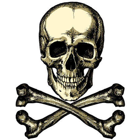 danger skull: A skull and crossbones on a blank background