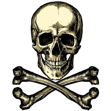 revenge: A skull and crossbones on a blank background