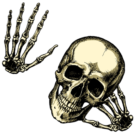 brigand: Friendly human skull with your hands on a blank background