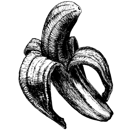 the thick forest: The peeled banana on a blank background black and white outline