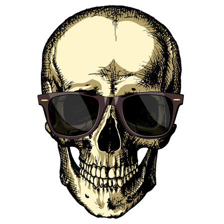 Human skull wearing sunglasses on a blank background