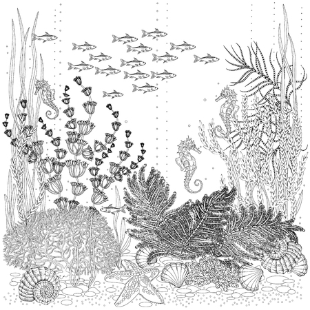 The flora and fauna of seabed colorless illustration.