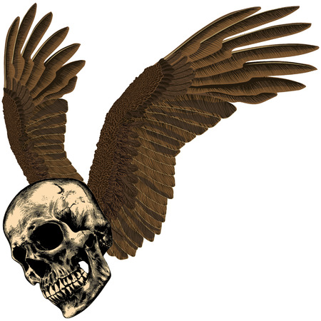 Human skull with eagles wings on an empty background Illustration