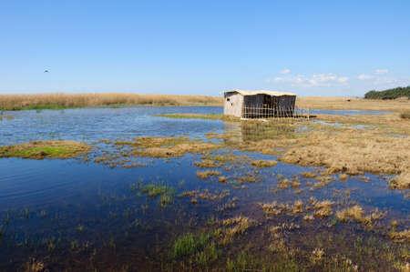 abode: Poor cane abode on rushy lake shore Stock Photo
