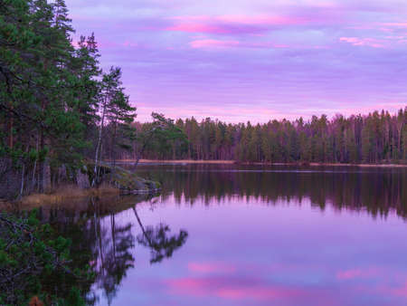 pretty sunrise on the beauty forest lake